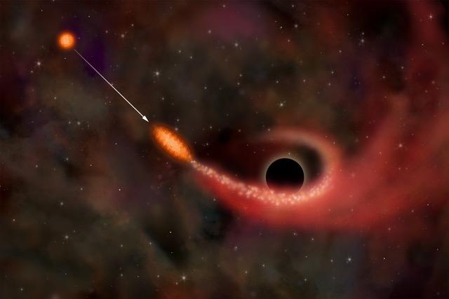 Событие приливного разрушения звезды в гравитационном поле сверхмассивной черной дыры в представлении художника. (c) NASA/CXC/M.Weiss